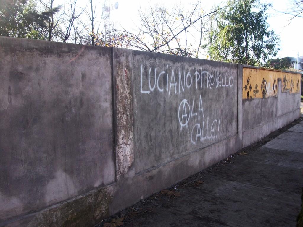 http://elactivista.espivblogs.net/files/2012/06/Luciano-Pitronello-1-Tortuga-1024x768.jpg